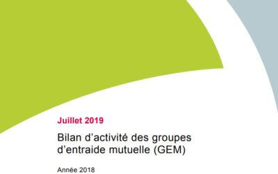 Bilan d'activité des groupes d'entraide mutuelle (GEM) par la CNSA
